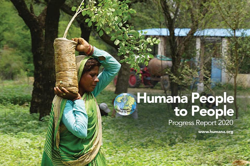 Progress Report 2020