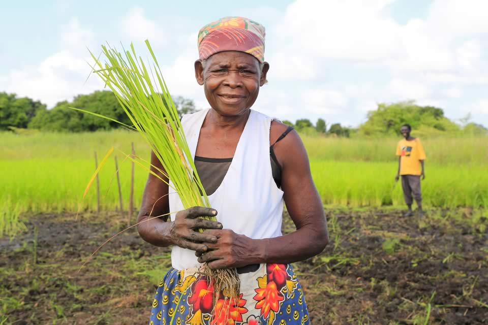 Impacting positively on rural farming in Mozambique