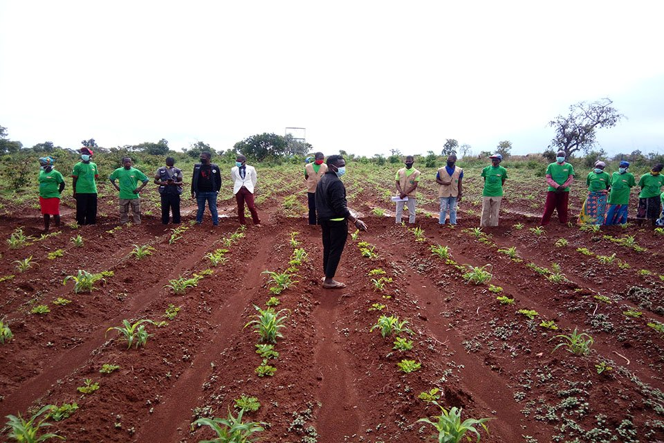 Sustainable Agriculture and Environment